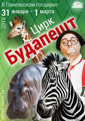 Куплю билет (1 или 2) в цирк на шоу Будапешт