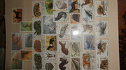 Почтовые марки разных тем .