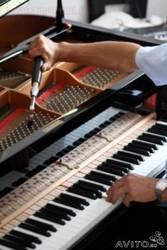 Настройка фортепиано(пианино,  рояли)